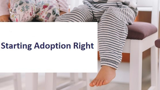 blog title starting adoption right